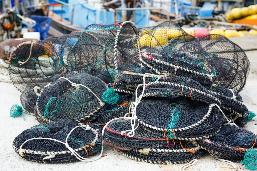 Traps for capture fisheries